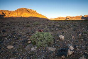 Hauchabfontein Tirasberge Namib Naukluft