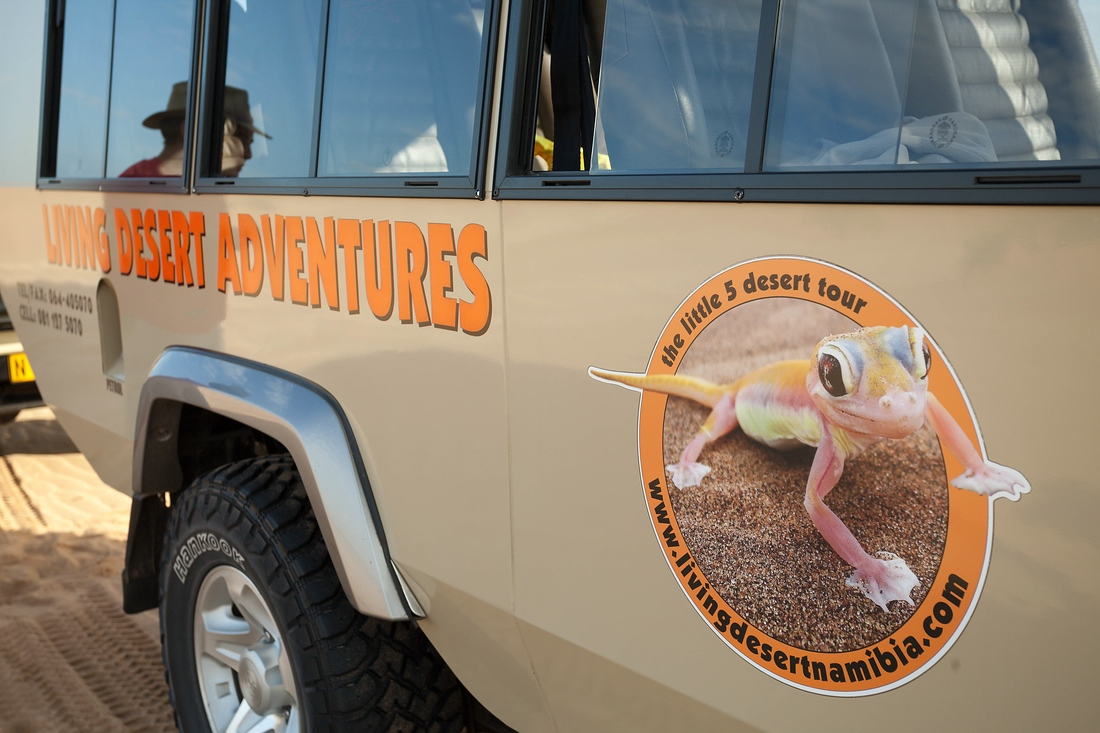 Living Desert Adventures by Chris, the little 5 tour, Swakopmund, Namibia