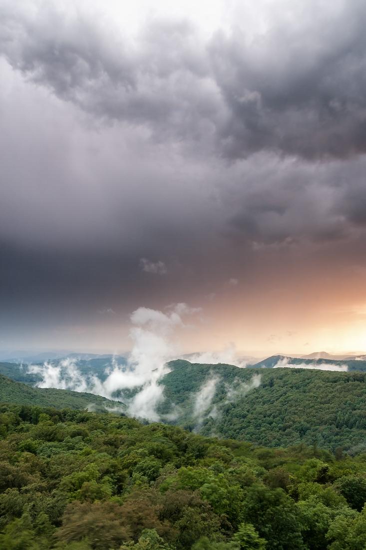 Pfälzerwald, Aussicht vom Luitpoldturm