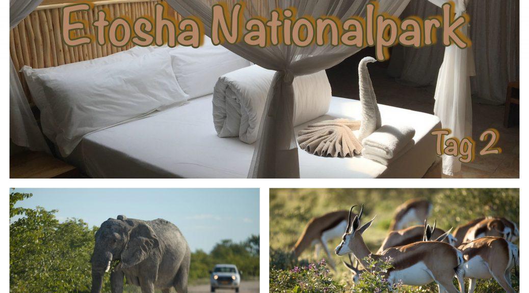 Tag 12 - Etosha Nationalpark