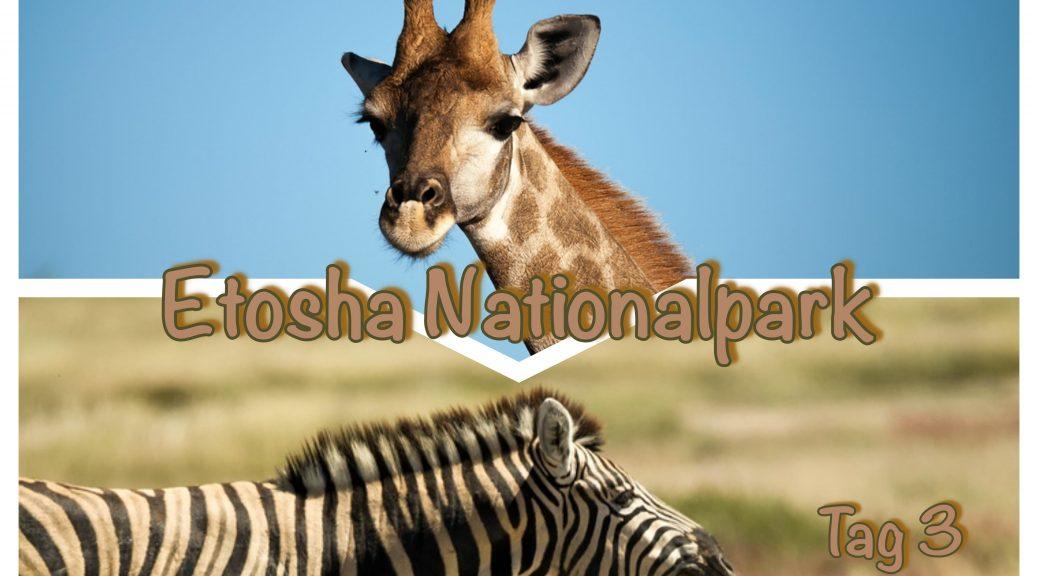 Etosha Nationalpark - Tag 3